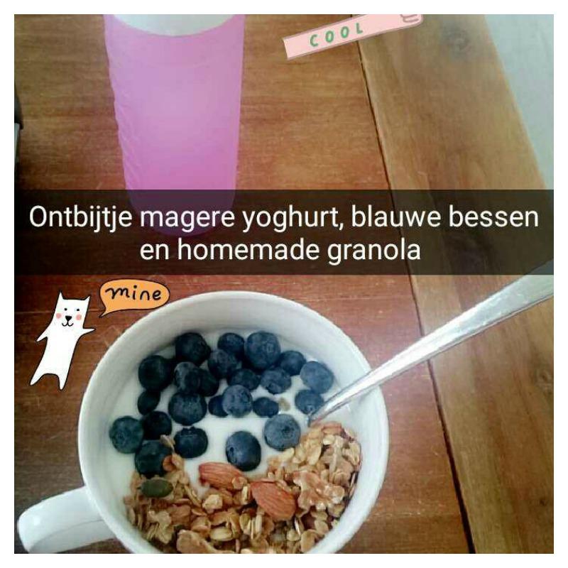 blauwe bessen granola yoghurt
