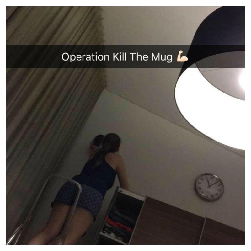 muggen doden