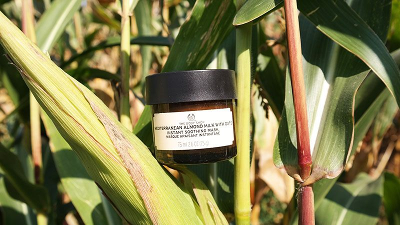 The Body Shop mediterraan amandel melk met haver masker