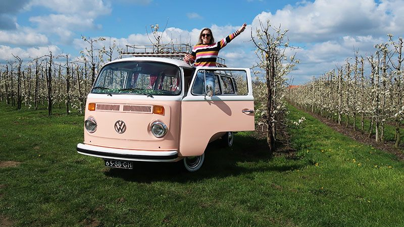 volkswagen bus miss peach