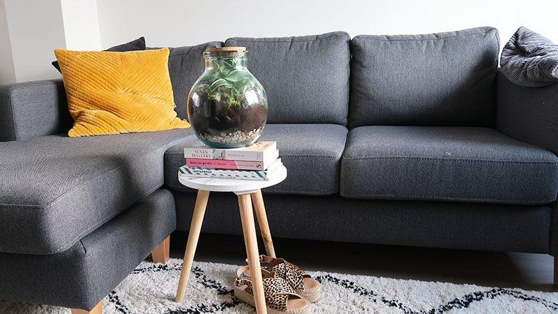 terrarium in huis