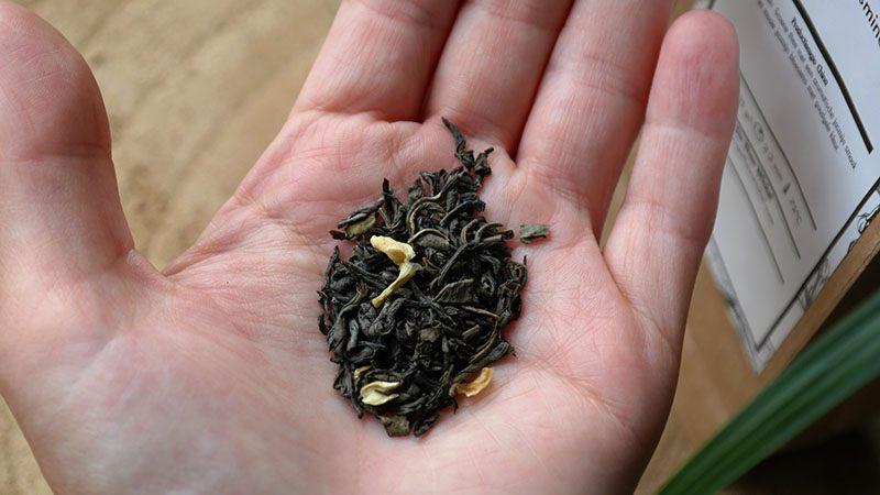 china jasmine thee
