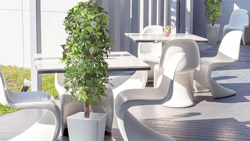 schefflera kunstplanten voor buiten
